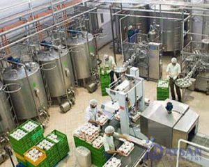 خط تولید شامپو